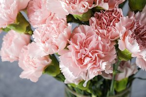 Pink carnation flowers in glass vase