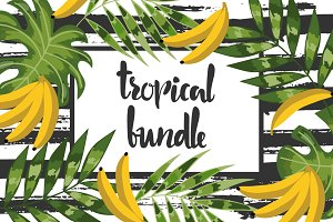 Amazing Tropical Bundle for decor
