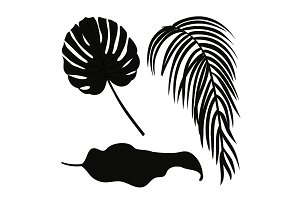 Set of palm leaves silhouettes