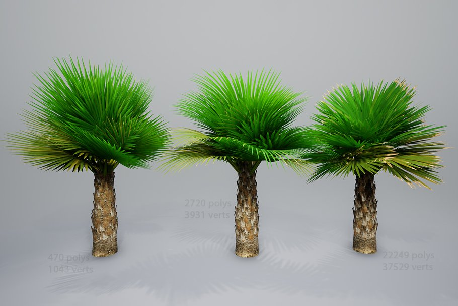 Palm with LODs