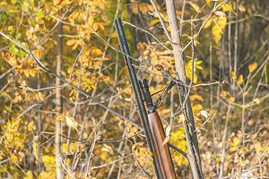 classic hunting rifle shotgun lean o