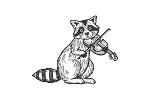Raccoon playing violin engraving