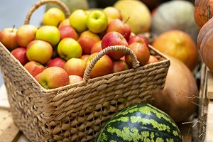 autumn fresh raw harvest mix of frui