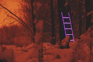 Neon ladder - Exit/Enter