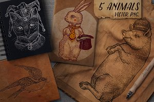 5 Graphics Animals set