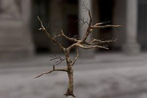 Dead_Tree_1