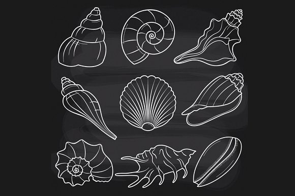 chalk out of seashells