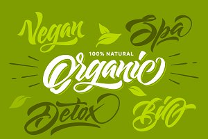 Organic natural and eco typography