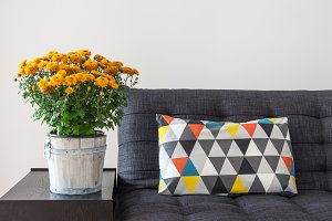 Chrysanthemums and bright cushion