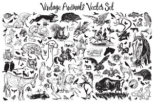 Vintage Animals Vector Set 1