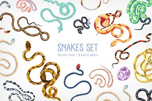 Snakes set and seamless