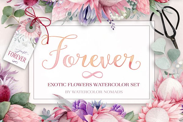 Exotic Watercolor Flowers Collectio…