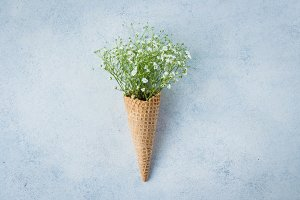 Spring Minimal Concept. Waffle cone
