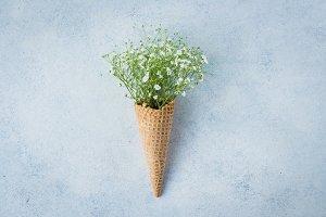 Spring Minimal Concept. Waffle cone