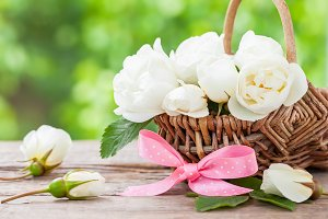 Basket with wild rose flowers
