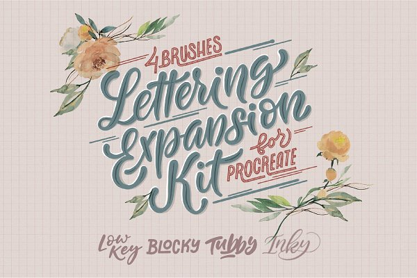Photoshop Brushes: The Scratchy Nib - Lettering Expansion Kit [Procreate]