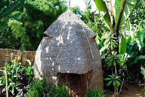 Traditional Dorze tribe house in Che