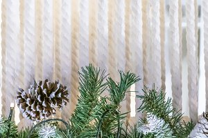 christmass pine tree branches with c