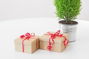 Little green tree and simple gifts