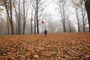 autumn forest boy