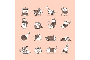 Cute pigs collection for your design