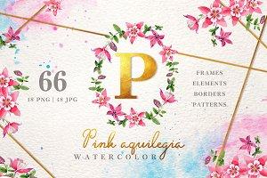 Pink aquilegia Watercolor png