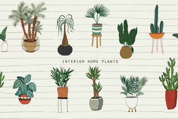 Graphic Patterns: GooseFrol - Interior Home Plants
