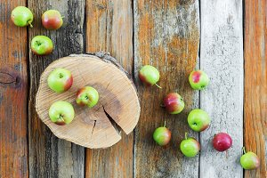 Apple tree stump and apples