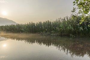 Sunrise over the misty swamp