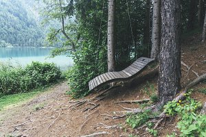 Wooden resting place in the forest