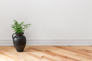 Amphora with green plant near a wall