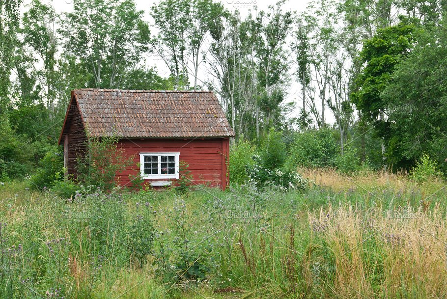 Traditional Swedish Red House Nature
