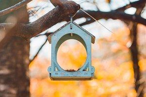 Empty bird feeders