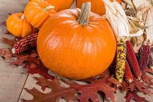 Pumpkins and corn decorations