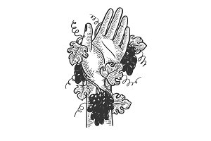 Hand braided with grapevine vector