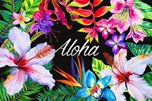 Aloha - tropical flowers kit.