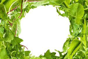 Salad Leaves frame