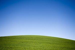 Panoramic spring landscape