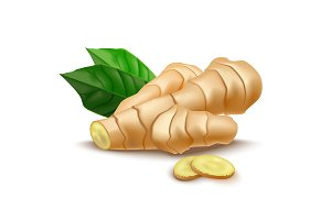 Whole Ginger Root and Slices. Vector