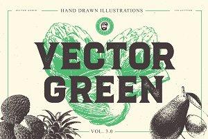VECTOR GREEN HAND DRAWN BUNDLE 3.0