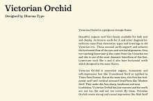 Victorian Orchid by  in Serif Fonts