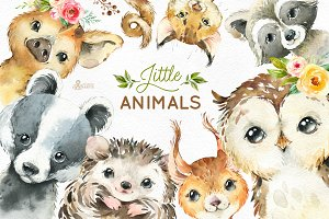Woodland. Little Watercolor Animals