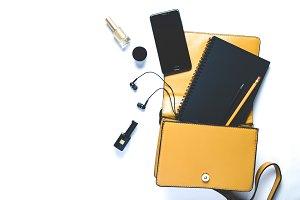 Women's handbag and accessories on w