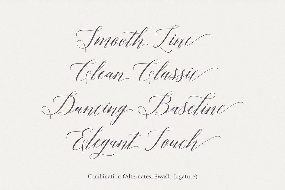 174be945607d0 Adelicia Script ~ Script Fonts ~ Creative Market