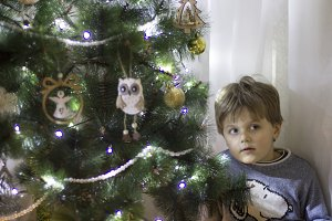 The boy decorates the Christmas tree