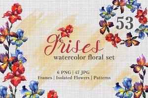 Irises Watercolor png