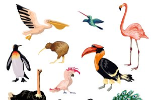 Exotic birds decorative icons set