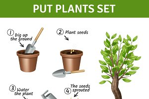 Putting and growing plants set