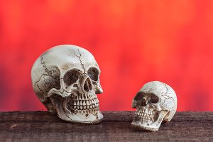 Skull with red background