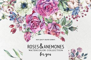 Roses&Anemones for you